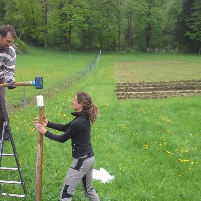 Erik & Tina beim Zaun aufstellen