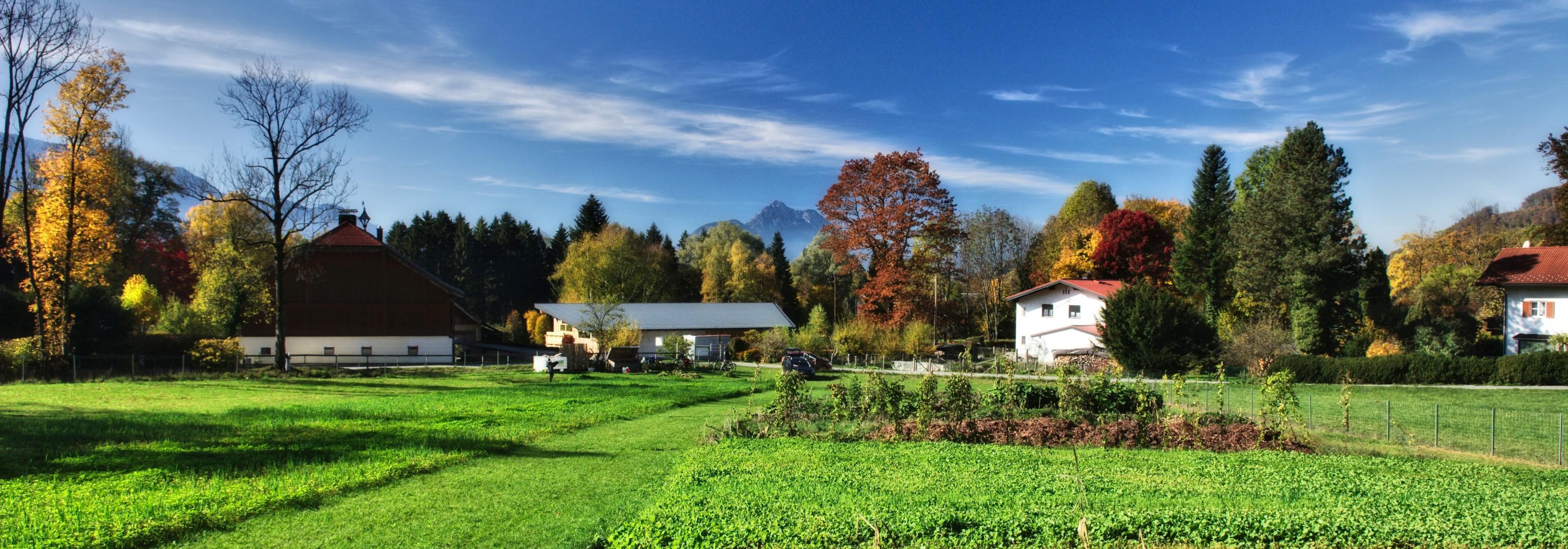 Übersicht Acker im Herbst
